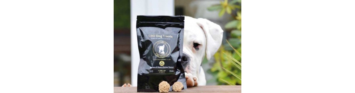 CBD Dog Treats UK by Incr-edibles